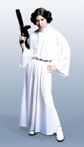 leia-princess-leia-organa-solo-skywalker-9301321-285-500